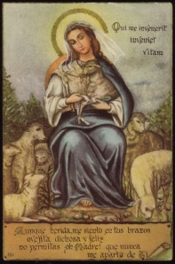 Although wounded, I am in your arms blessed, happy little sheep oh mother do not let me ever turn away from you