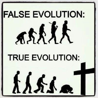 is evolution a true theory The theory of evolution (like all the scientific theories) does not pretend to be  absolute truth, but a working hypothesis, to be corroborated or disproved or.