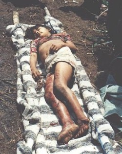Killed by FARC